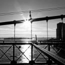 brook_bridge3